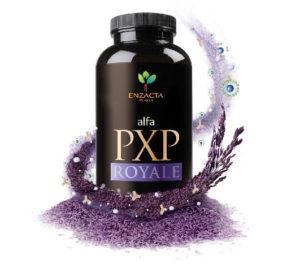 Alfa-PXP-Royale