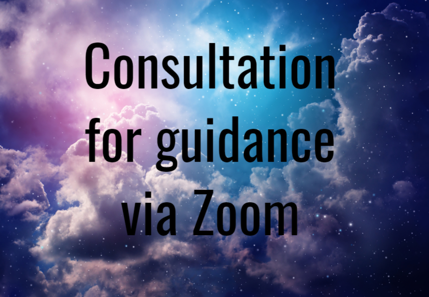Consultation for Guidance via Zoom